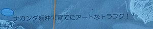19瀬戸芸沙弥島54
