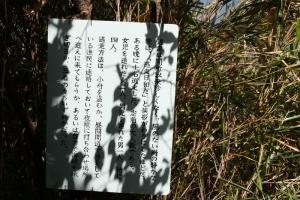 大島5リングワンデルング