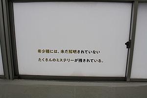 19瀬戸ゲイ北浜15