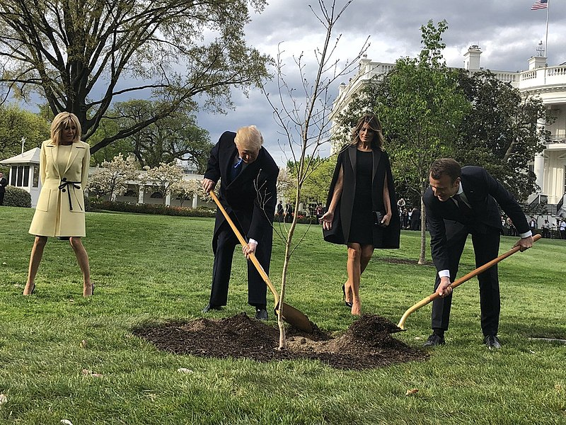Trump_and_Macron_plant_a_tree.jpg