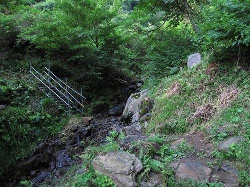 nosakadake010710 (2)