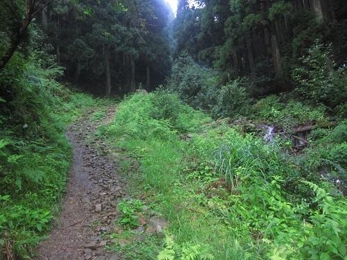 nosakadake010728 (1)
