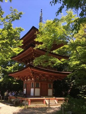 浄瑠璃寺5