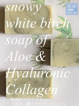 リサイズ 6月 白樺樹液のアロエとヒアルロン酸コラーゲン