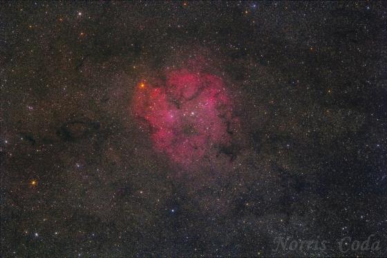 ケフェウス座散光星雲IC1396