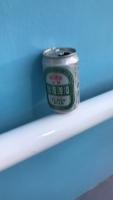 藍妹やめて台湾ビール190529