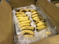バナナ配布190614