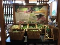 鹿野山菜コーナー190725