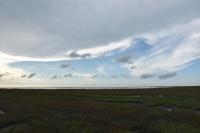 右側は草原190723