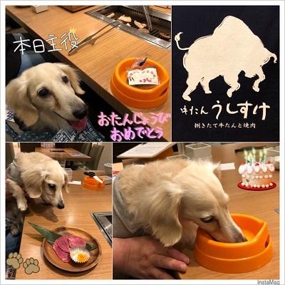誕生日_うしすけ