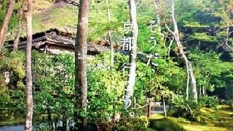 2019初夏☆彡そうだ京都♪
