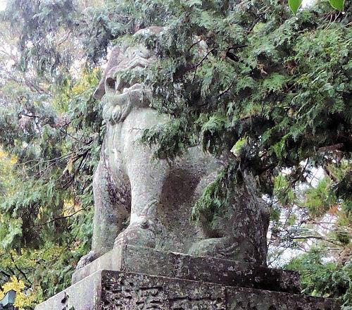 190601hayatama04.jpg