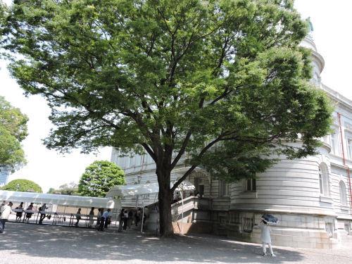 190611akasaka14.jpg
