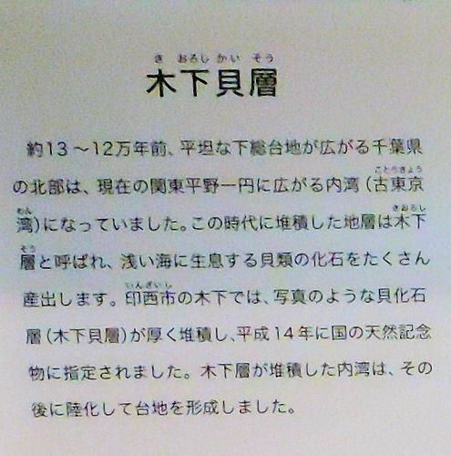 190706ichikawa15.jpg