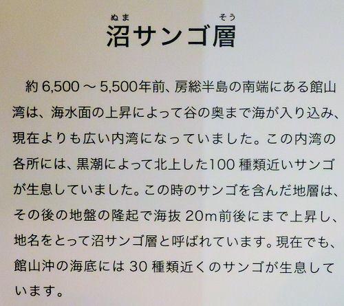 190706ichikawa18.jpg