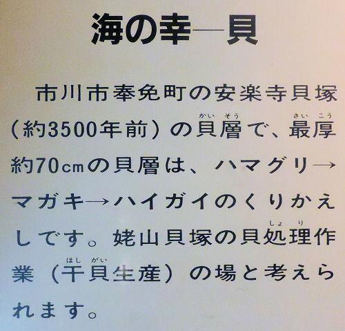 190706ichikawa22.jpg
