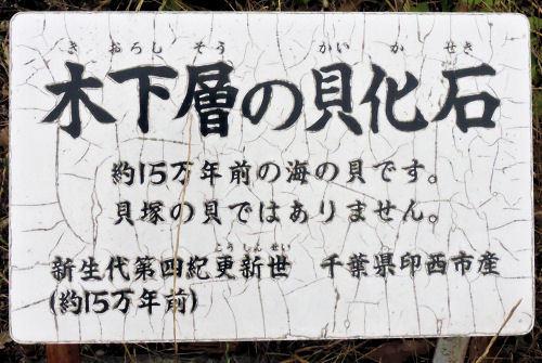190706ichikawa33.jpg