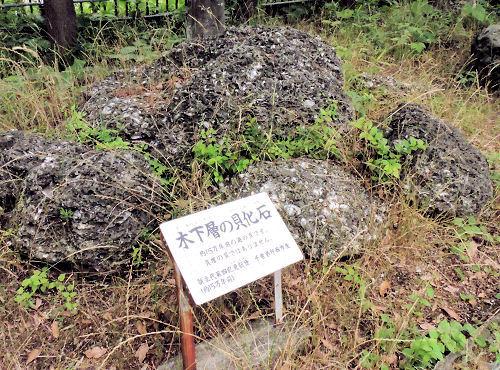 190706ichikawa34.jpg