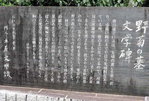 190708yagiri03.jpg