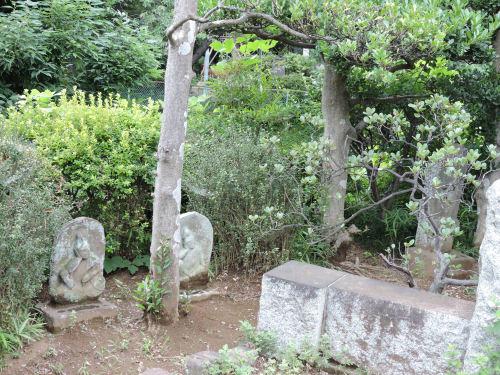 190708yagiri04.jpg