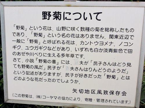 190708yagiri05.jpg