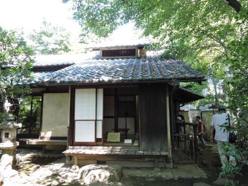 190802hayashi10.jpg