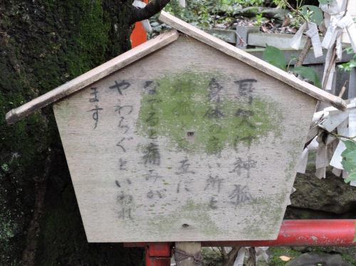 190803mizu02.jpg