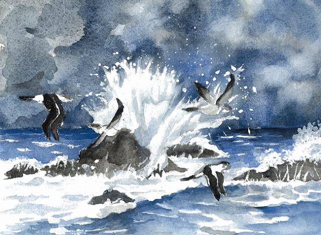 s-山陰海岸とカモメ