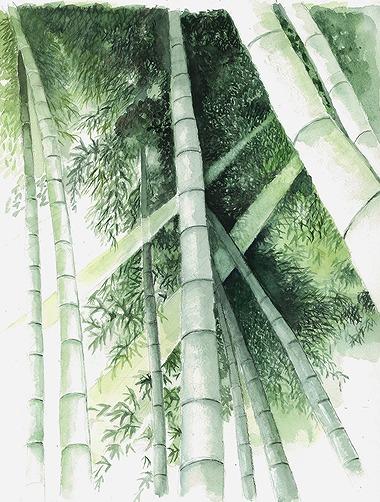 s-竹林と光芒