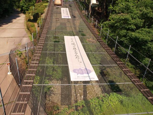 s松山城10