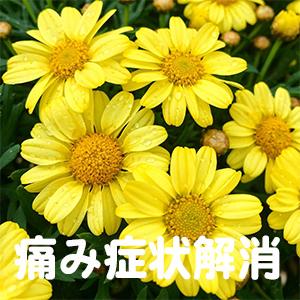 腱鞘炎,京都,大阪,滋賀