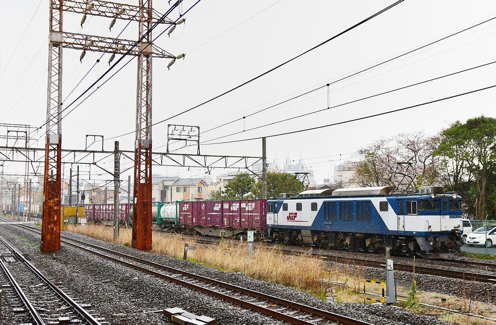 DSC_9441bcz1_5tksf.jpg