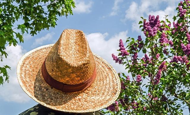 hat-1379590_640.jpg