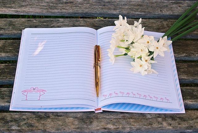 journal-1414116_640.jpg