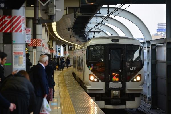 2019年2月26日 JR東日本中央本線 東京 E257系M-111編成