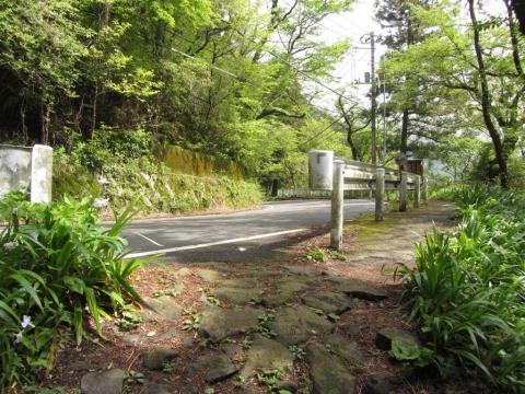 箱根旧街道 千鳥橋上