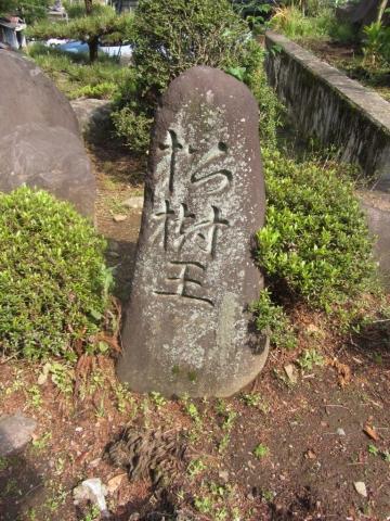 松樹王の刻銘石