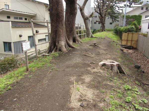 幸田門付近の三の丸土塁