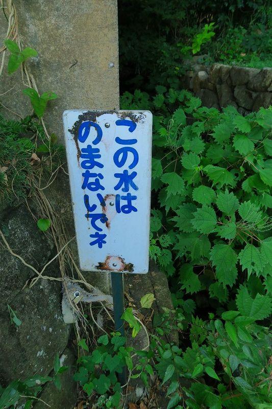 IMG_2538.jpg