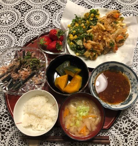 kikunatoko-nnnokakiage.jpg