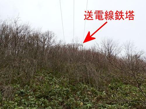 takamori_ak6.jpg