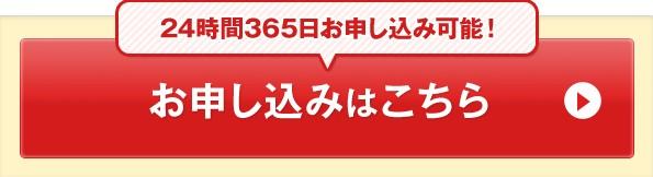 卓球丼ナイトお申込フォーム