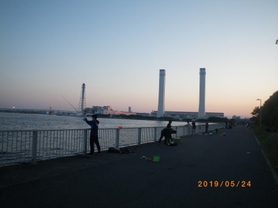 IMGP5831.jpg