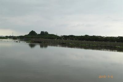 P1170056.jpg