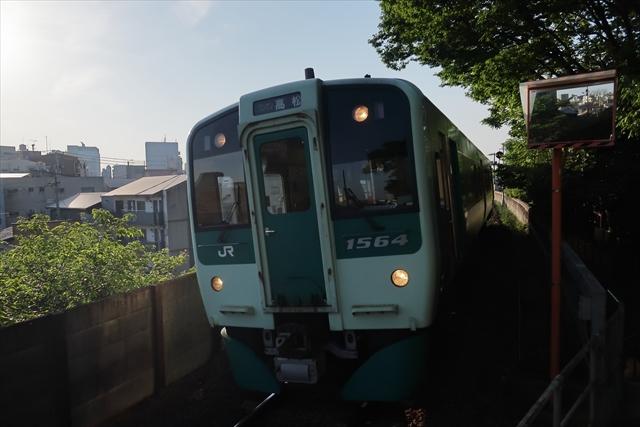 190511-さか枝-15-S