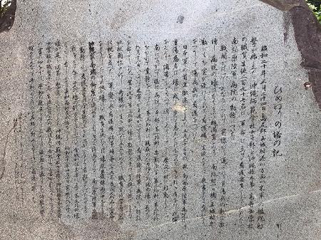 ひめゆり (5)