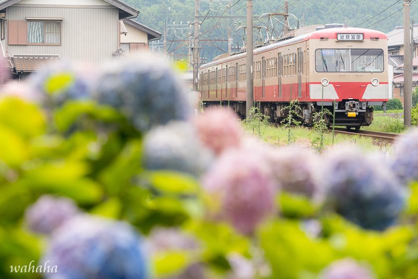 010629sangi-1.jpg