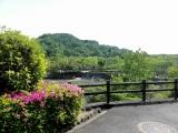 鏡山公園でアコーディオン20190512-3