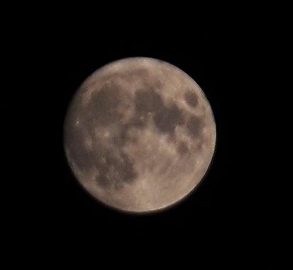 P8140494 明日が満月
