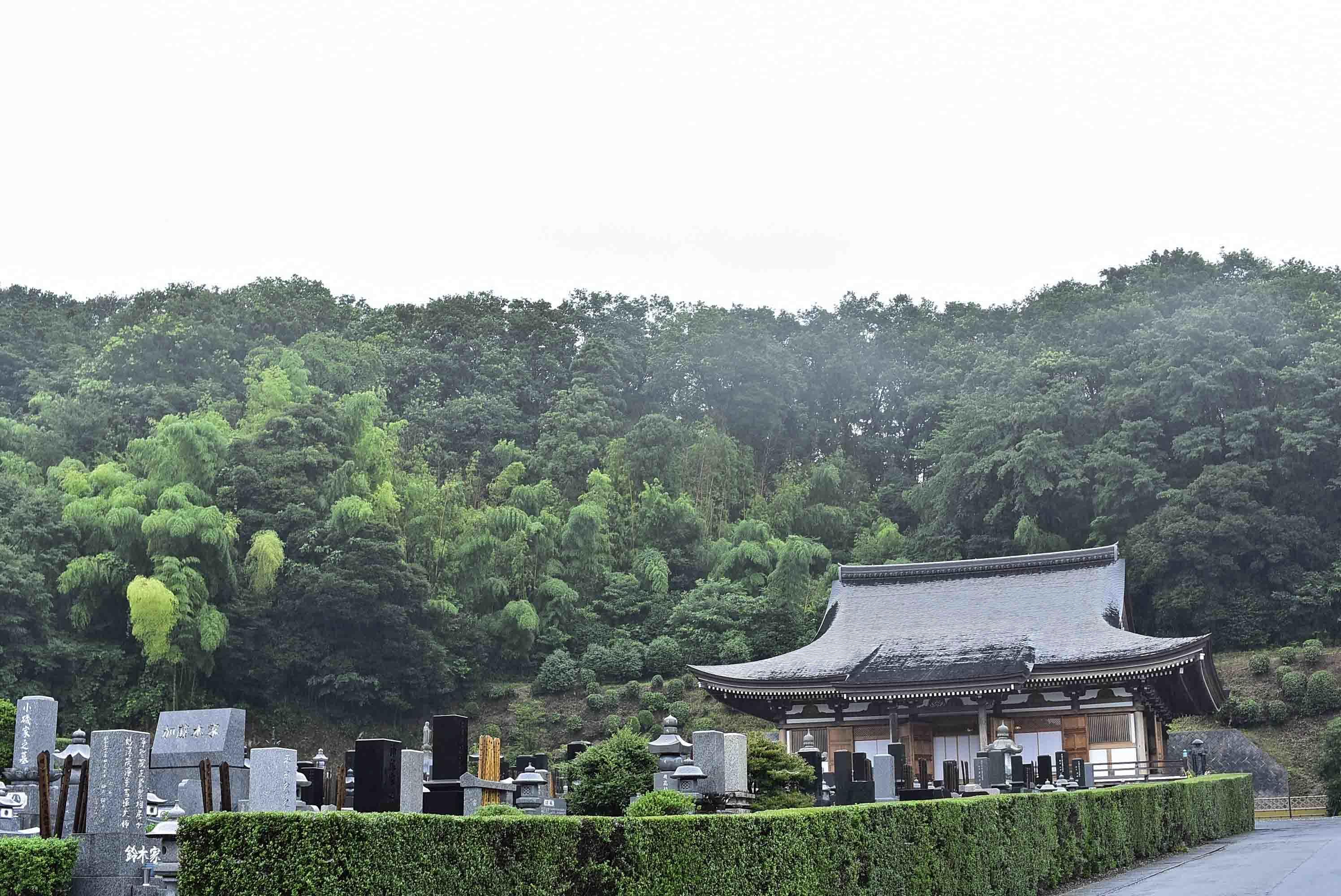 小松城遠景